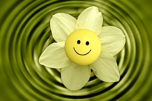Flower 233838 340 1
